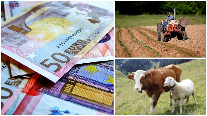 Lista-subventii-APIA-plata-finala-Agrointeligenta.jpg