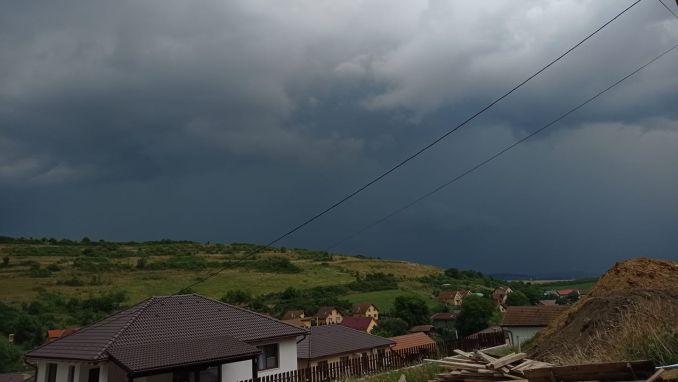 nori-de-furtuna.jpg